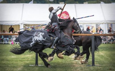 Our Knight's 2018 Joust at Usk Show