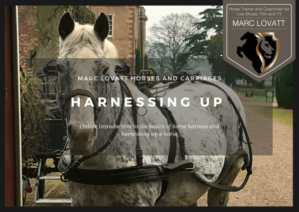 Marc Lovatt Horses and Carriages Teaching Harnessing Up Horses Cover Image