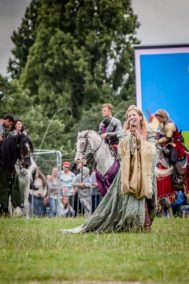 The Cavalry of Heroes performing Medieval Jousting Show at Lambeth Country Show 2017 Knights on Horseback 17