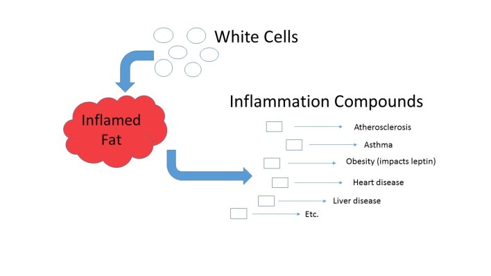 Inflamed fat