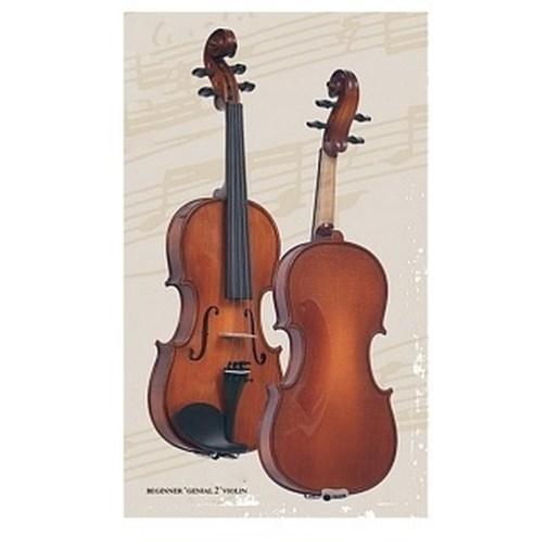 Скрипка 1/2 Gliga Beginer Genial 2 Nitro B-V012 описание и цены