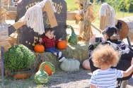 Pumpkins The Center 2018 11