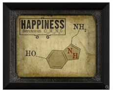 serotonin-happiness