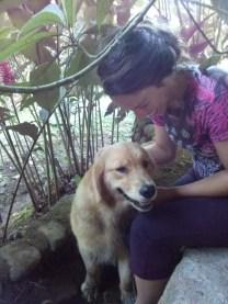 Dog at Rancho Margot