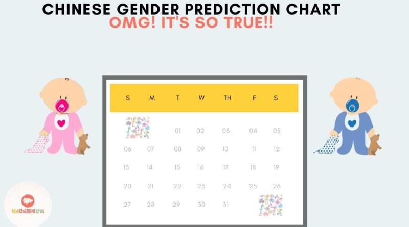 Chinese Gender Predictor For Babies (Chart & Calculator) - TCT