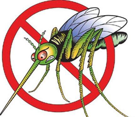 Keep mosquitoes away 01