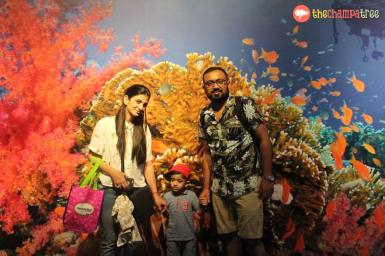 things to do in Singapore with kids 04