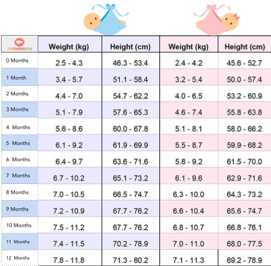 Baby weight and height chart