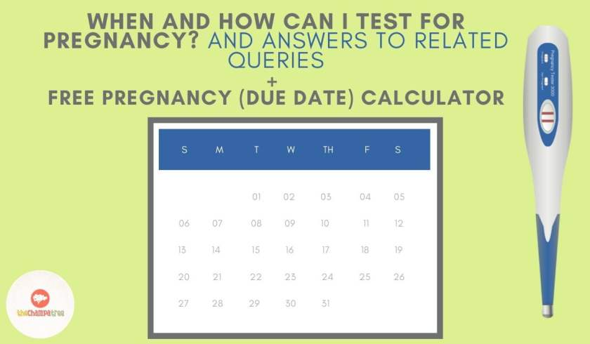 Pregnancy Test At Home - Calendar