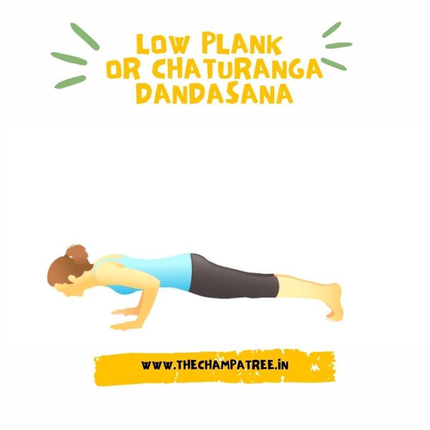 Yoga for women - Low Plank