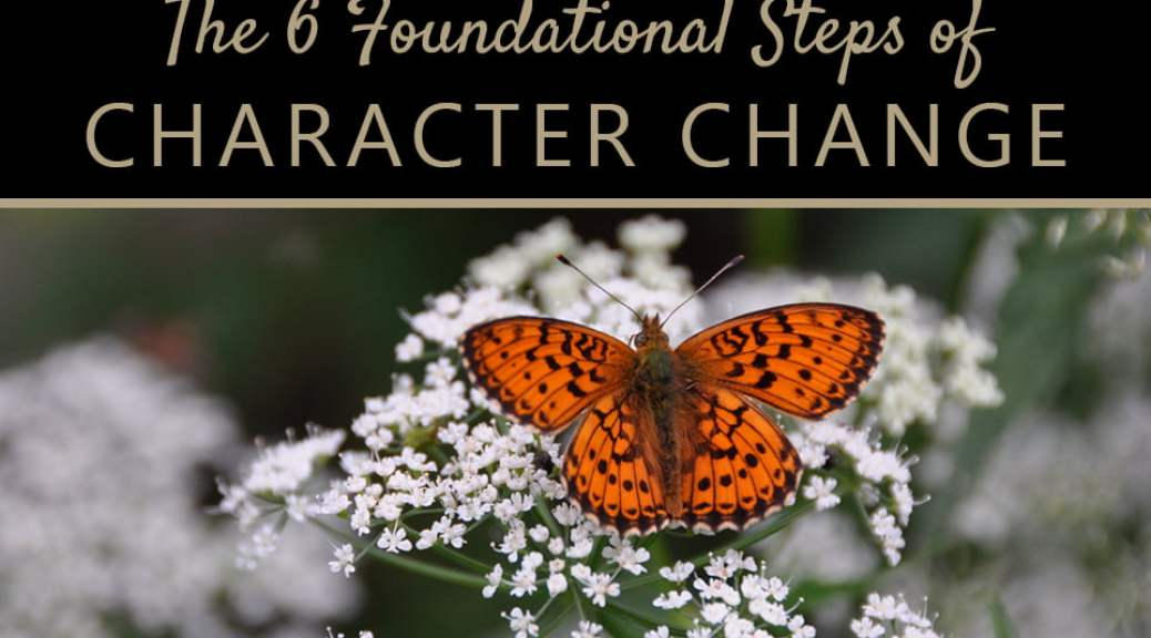 The 6 Basic Stages of Character Change