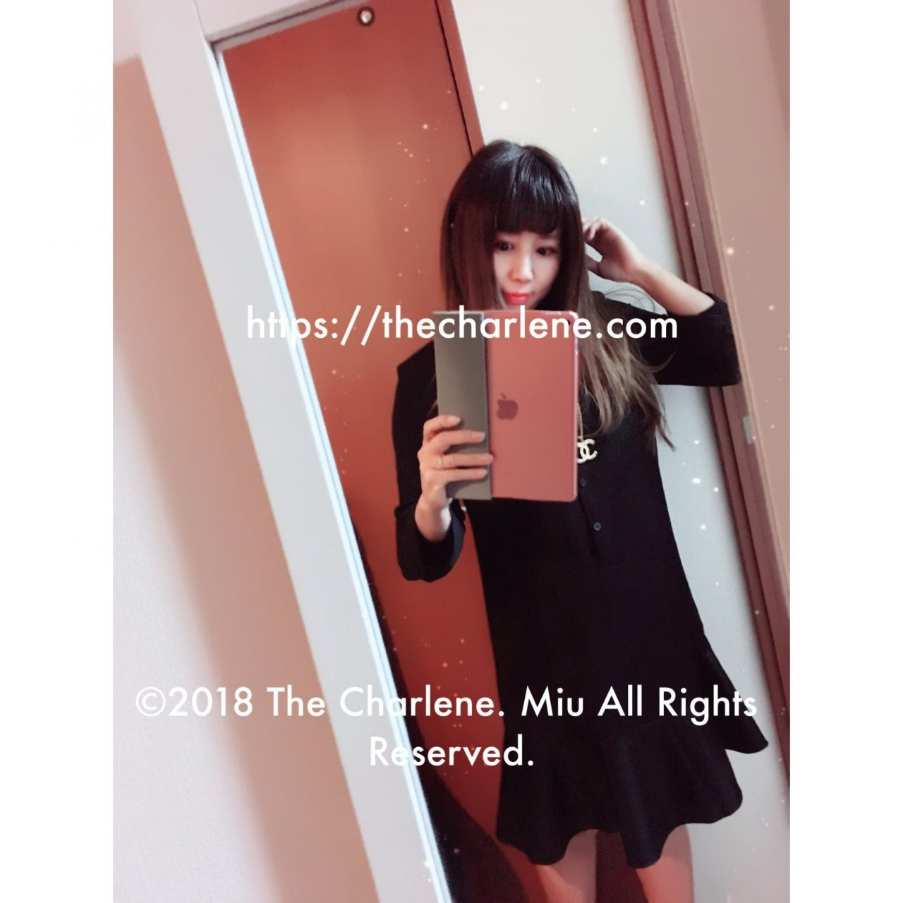 ©2018 The Charlene. Miu All Rights Reserved.