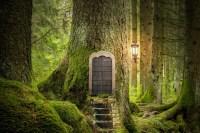 magic door in old oak tree in a forest