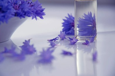 purple flowers in a beautiful glass jar. Aromatherapy for artists can help ease money panic