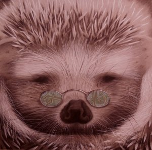 Porcupine with spectacles. Art of Anvil Williamson for post on local community for artists.