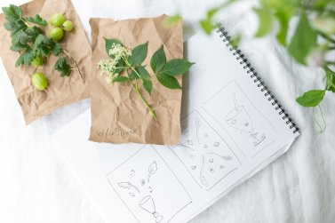 herbal flat lay with idea journal with drawings of an artist