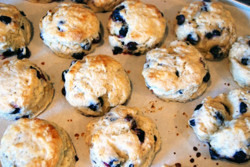 Maple Blueberry Scones | The Charming Detroiter