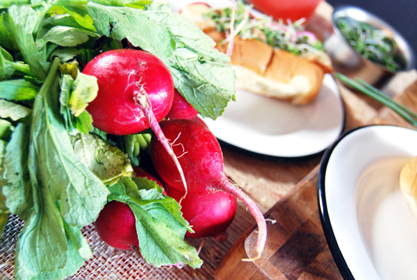 Sautéed Shrimp Rolls with Ancho Aioli, Radishes, and Microgreens | The Charming Detroiter