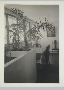 Gruntal, V.G. Interior view of Nikolai Milutin's apartment in the People's Commissariat for Finance (Narkomfin) Apartment Building showing the upper level, 25 Novinskii Boulevard, Moscow, after 1930