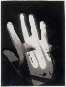 László Moholy-Nagy, American, born Hungary, 1895-1946 Title Untitled Date 1926 Material Gelatin silver print (photogram) Measurements Sheet- 238 x 178 mm. (9 3_8 x 7 in.)