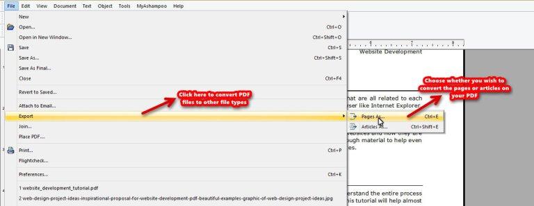 Ashampoo PDF Pro convert