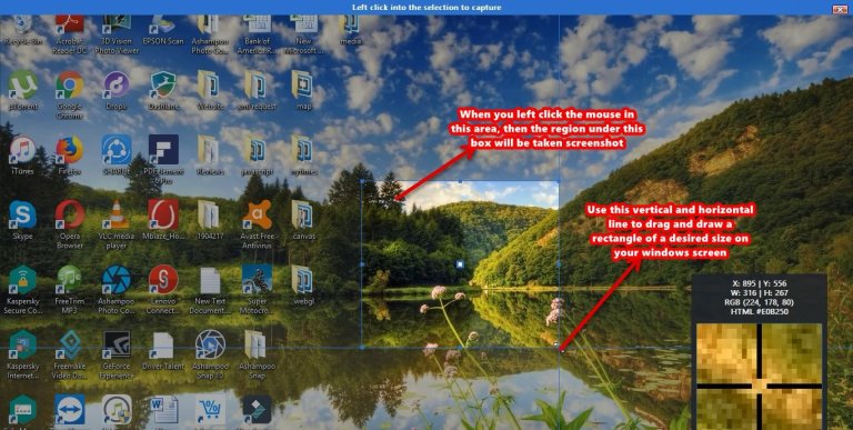Ashampoo Snap screenshot free rectangle