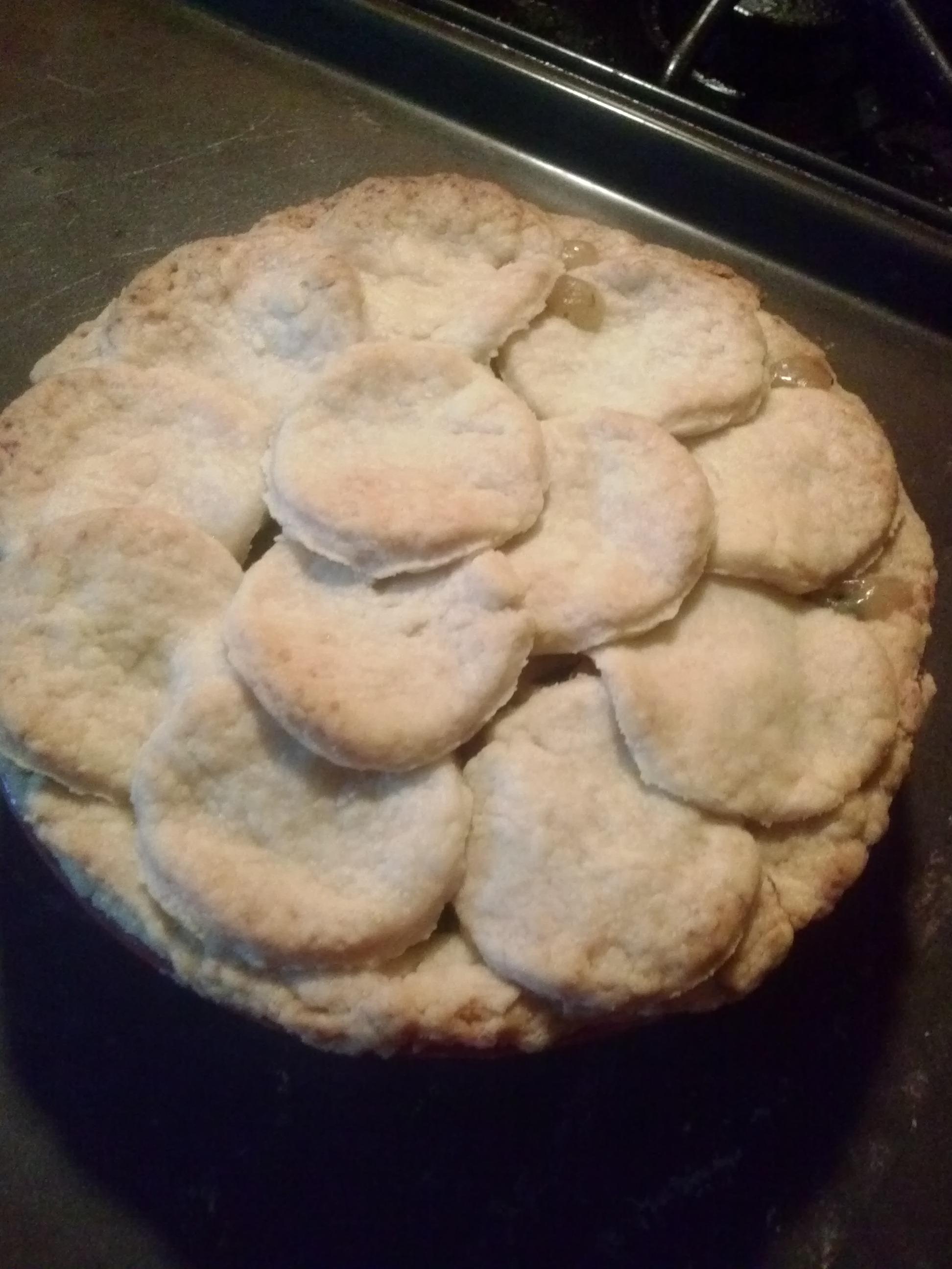 A Quickie….Chicken Pot Pie
