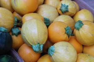 Zucchini from Keenan Farm