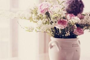 beautiful-colors-cute-flower-Favim.com-499014