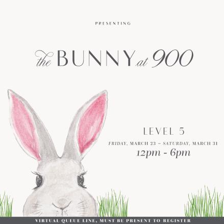 Instasize_bunny_v4-01.png