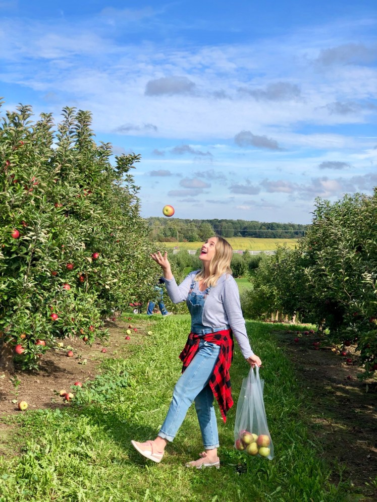Cranes Orchard is located in Fennville, MI and a good road trip from Chicago. It's a fun buckelist item to add to your list this fall!