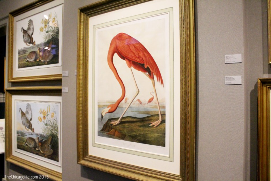 Joel Oppenheimer Gallery