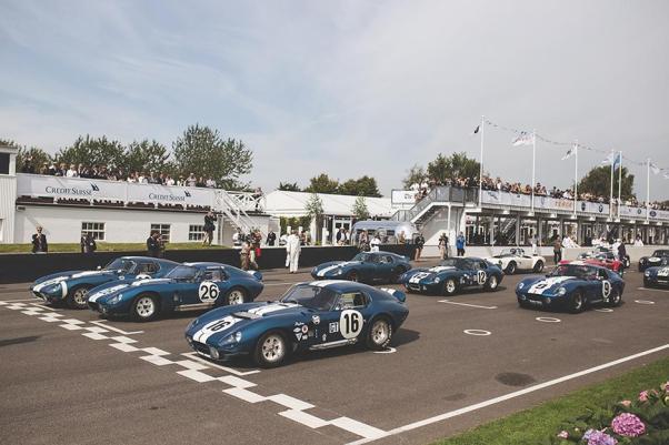 6 Cobra Daytona Coupes on the Goodwood Grid