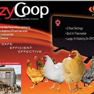 Coop Supplies
