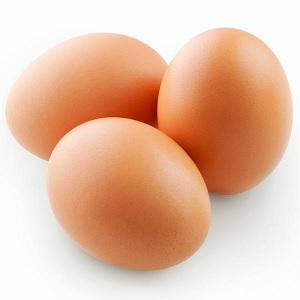 Brown Egg Layers