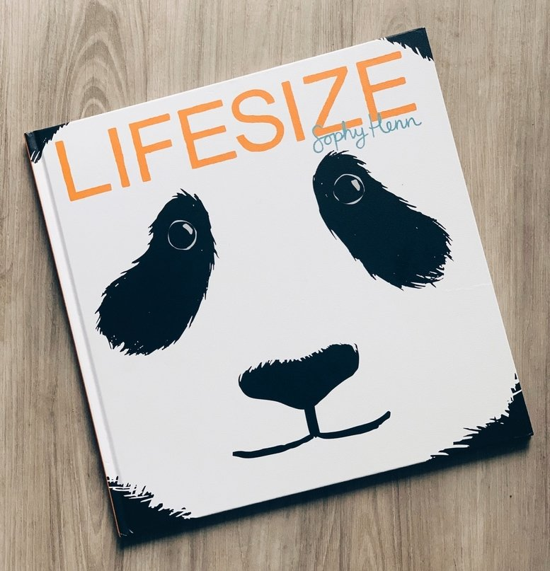 cover of lifesize book
