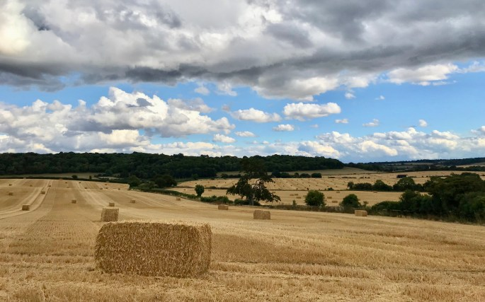 Barley bales dot-dot-dash across the landscape