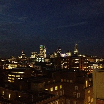View from my office's roof terrace