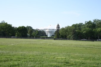The White House from the temporary fence