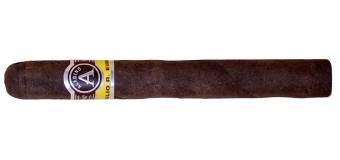 Aladino Maduro Cigar Review