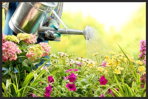 4 Ways to Keep Your Yard & Garden Healthy  While you may think your home and yard are separate and do not impact one another, this isn't always the case. There are different ways you may actually be doing damage to your landscaping or garden because of the things that happen inside of your home. If you take pride in your lawn or garden, be aware of what is going on in both your yard and your home.  Water & Chemical Problems  If you wash your floors, you may go outside and dump the bucket of dirty water out into the backyard. But what are those chemicals going to do to your yard?  Floor cleaning products often contain ammonia and while ammonia is found naturally in plants, once it is diluted with water, it changes form and can actually do more harm than good. Household ammonia will discolor your plants, burn the roots and eventually kill them.