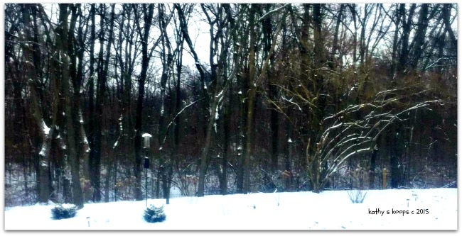Snowy Cincinnati Real Estate