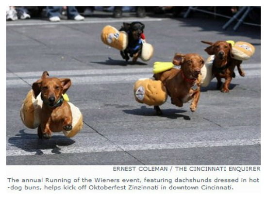 Zinzinnati Oktoberfest 2015 Running of the Wieners