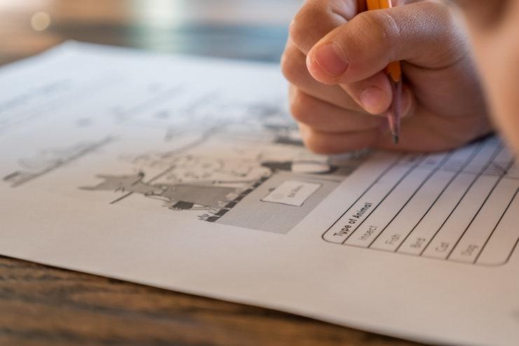Photo of kid doing homework