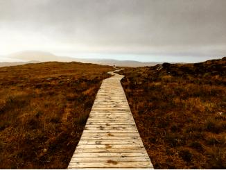 Crédit photo @Barbara Debout / Connemara - National Park