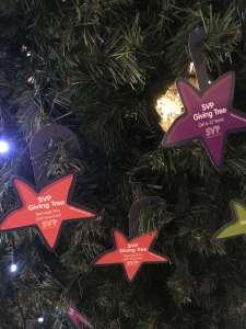 Stars' wishes - Photo: Margot Brunet-Debaines