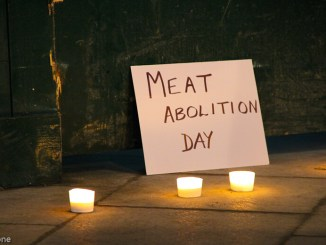 Meat Protest -2010_mill&southBank-328 (flickr)