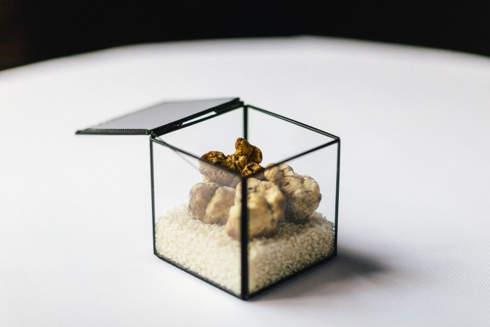 Het is tijd voor truffels!