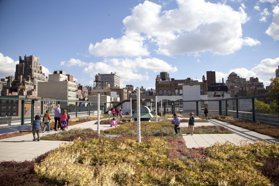 The green roof at P.S. 41; click to enlarge. (Photo: Jessica Bruah)
