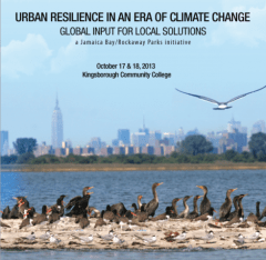 Urban resilience cover photo